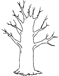 Small Picture Outline Of A Tree Without Leaves Coloring Page Free Download