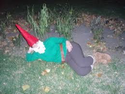 homemade garden gnome costume photobucket
