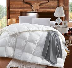 down comforter cover queen stylish duvet insert size full comforters goose pertaining to 19