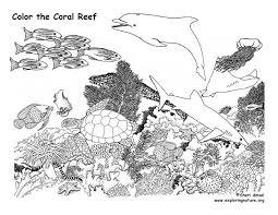 Awesome Coral Reef Coloring Page New Sheet 5 Animals And Plants
