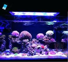 reef tank lighting control led light c grow marine reef tank white blue aquarium fish tank reef tank lighting