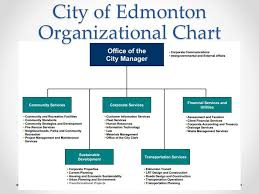 How Does Local Government Work Ppt Video Online Download