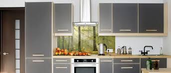 kitchen splashback flower printed glass