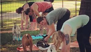 texas goat yoga