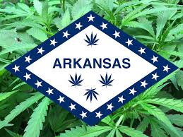 Image result for arkansas marijuana