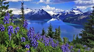 top 29 world beautiful nature wallpaper