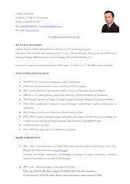 Translator Resume Sample Resume Sample Freelance Translator Danayaus 10