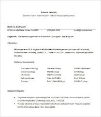 Summer Internship Resume Template Internship Resume Template 11 Free Samples  Examplespsd Download