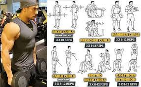 Bigger Biceps In A Month By Training Twice A Week Biceps
