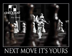 Brazilian JiuJitsu Revolution Inspiration Jiu Jitsu Quotes
