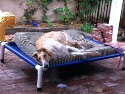 indoor outdoor dog bed – mukulmishra.me