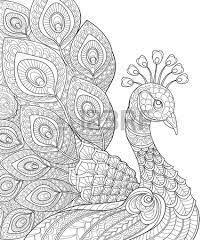 Afbeeldingsresultaat Voor Waterlelie Lotus Kleurplaat Quilts