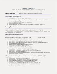 Resume Summary Examples For First Job Free Resume Examples