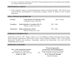 Resume Kirstin Painter Professional Critical Analysis Essay