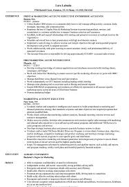 Sample Executive Resumes Marketing Account Executive Resume Samples Velvet Jobs 8