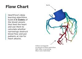 Heart Flow Chart Heartflow Has Raised 500 Million For A Test To Detect Heart