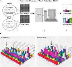 Fmat For High Throughput Screening Of Soluble Scfv Recombinant