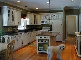 Amazing Image Of: Small L Shaped Kitchen With Island Great Ideas