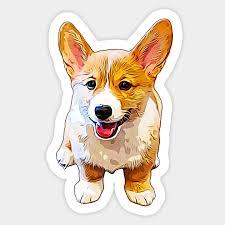 Corgi Puppy Growth Chart Corgi Puppy Dog