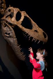 Tyrannosaurs exhibition to make only European appearance in ...