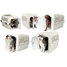 dog crates size chart vari kennel pet crate crate petmate x small 2_grande jpg v 1528262469
