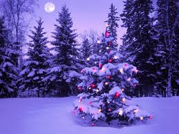 Animated Snow Scenes Christmas Wallpaper Snow Wallpapers Christmas Wallpaper