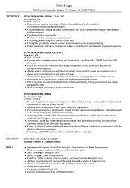 Junior Programmer Resume Samples Velvet Jobs