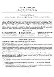 Summary Examples For Resume Enchanting Manager Career Change Resume Example