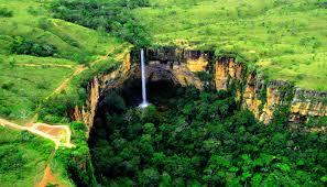 Brasile: illegale il 41% del legname del Mato Grosso