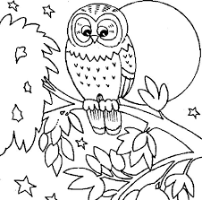 Small Picture Best Owl Coloring Pages To Print Ideas New Printable Coloring