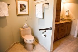 Toilet Grab Bars Walmart Bathroom Trends 2017 2018
