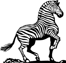 Small Picture Zebra Coloring Pages Without Stripes Coloring Pageszebra Coloring