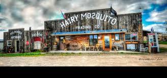 Milaca mn hairy mosquito