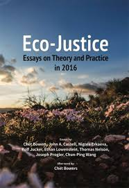 eco justice essays on theory and practice