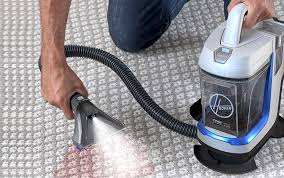 The 9 Best Carpet Cleaners for Pets, According to Reviews | Better Homes &  Gardens