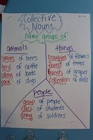 Chart Of Collective Noun Collective Nouns Anchor Chart Collective Nouns Noun