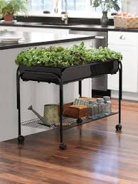 charcoal vegtrug patio garden with covers gardeners patio gardening tips patio gardening gifts