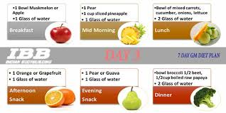 Diet Chart For Gym Beginners Pdf In Hindi Www