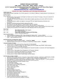 Certified Quality Engineer Sample Resume Mesmerizing Konboye Michael Ekiotenne Pipeline Engineer CV