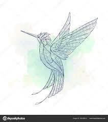 узорные полет колибри векторное изображение Maverickinanta