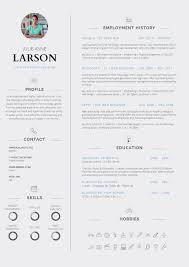 Professional Resume Template Sample
