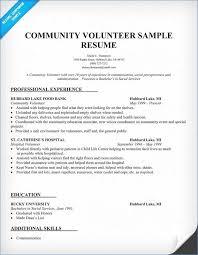 Hospital Volunteer Resume Igniteresumes Com
