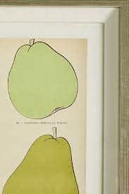 >modern pear wall art anthropologie slide view 4 modern pear wall art
