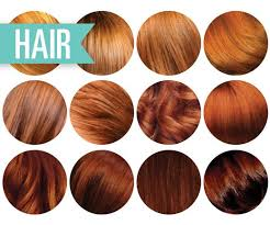 Natural Red Hair Color Chart Google Search In 2019 Red