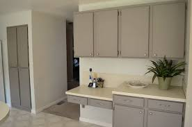painting oak kitchen cabinets whitePainting Oak Kitchen Cabinets White  Home Design Ideas