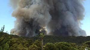 Yangın fırtınası Kütahya, Alanya, Didim ve Bodrum'a da sıçradı - Son dakika  haberleri