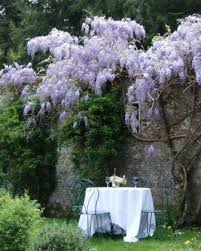 Table for two | Enchanted garden, Beautiful gardens, Romantic garden