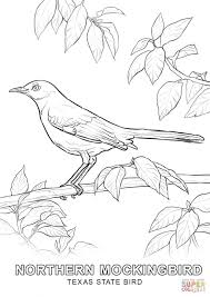Small Picture Texas State Bird coloring page Free Printable Coloring Pages