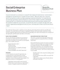 Nonprofit Business Plan Template Funding Request Business Plan Elegant Examples Npo Template