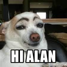 hi alan - Eyebrows Dog | Meme Generator